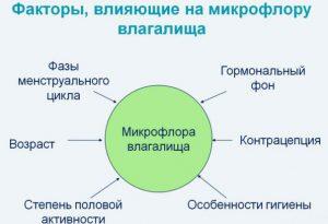 Изменение микрофлоры влагалища