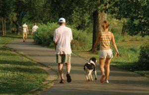 Оздоровительные прогулки на свежем воздухе