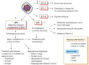 Последствия инфекции