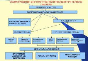 Развитие внутриутробной инфекции при герпесе