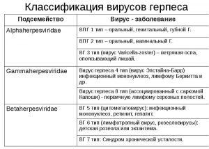 Классификация герпесвирусов