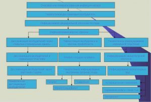 Схема патогенеза развития герпеса при беременности