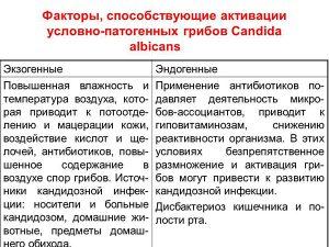 Факторы активизации грибов Кандида