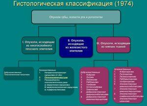 Гистологическая классификация
