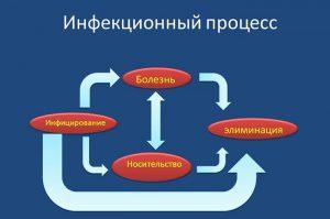 Инфекционный процесс