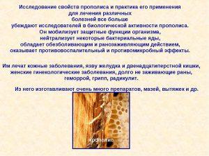 Полезные свойства прополиса