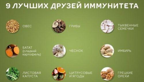 Продукты для поднятия иммунитета