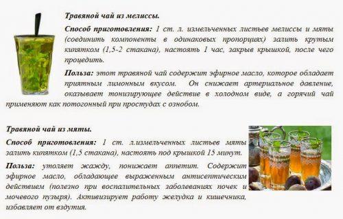 Рецепты чая из мелиссы и мяты