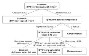 Схема диагностики ВПЧ