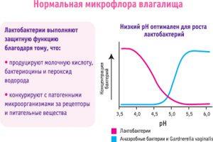 Нормальная микрофлора влагалища