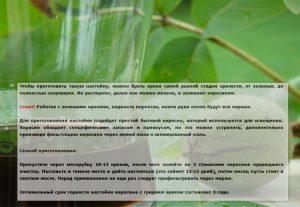 Рецепт керосина с грецким орехом