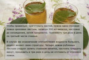 Рецепт настойки ореховых листьев