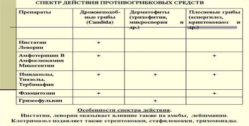 Спектр действия противогрибковых средств