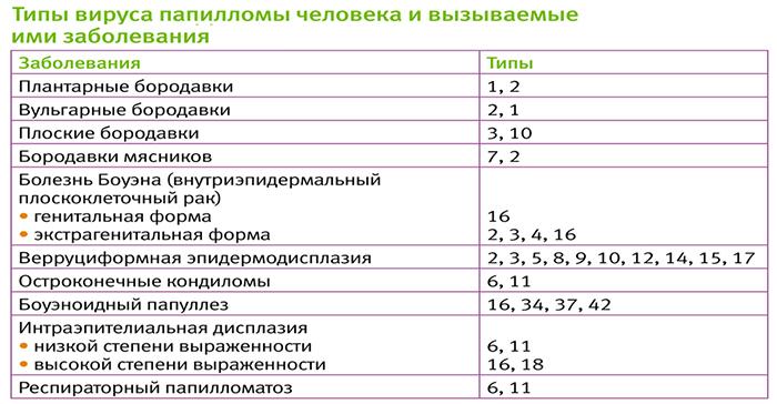 Впч 66 тип и беременность - Jks-k.ru