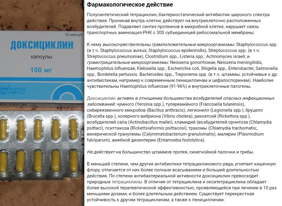 Доксициклин при хламидиозе схема лечения фото 143
