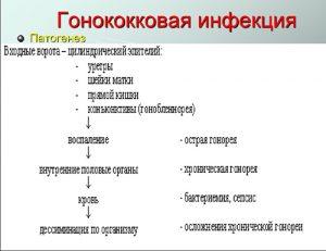 Патогенез гонококковой инфекции
