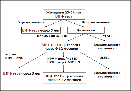 Скрининг впч 16 - Jks-k.ru
