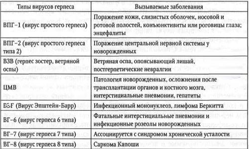 Типы вирусов герпеса