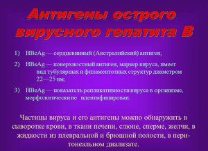 Антигены острого вирусного гепатита В