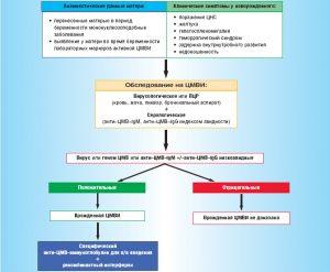 Диагностика и лечение врожденной инфекции