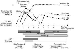 Анализ на антитела