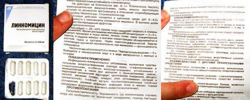 Инструкция к препарату Линкомицин