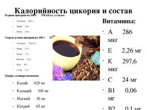 Калорийность и состав цикория