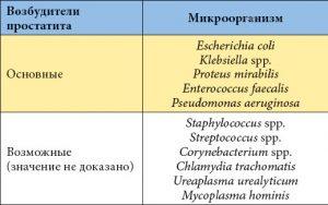 Наиболее частые возбудители простатита