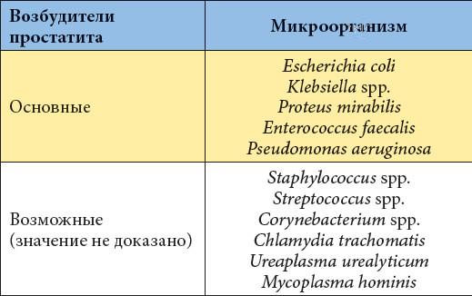 Бактерии при бактериальном простатите простатит влияет на зачатие детей