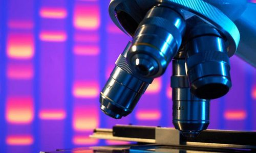 Определение генотипа вируса