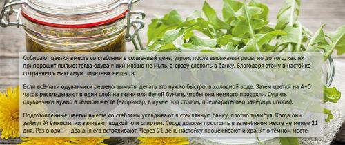 Рецепт настойки одуванчика
