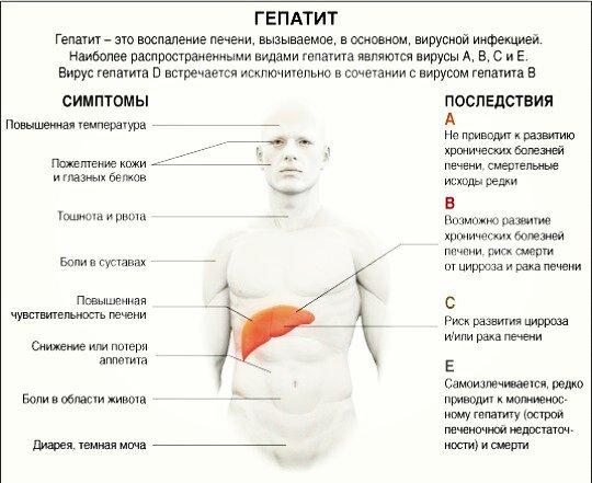 oxoxnet Транссексуалки трансы Москвы Снять вызвать