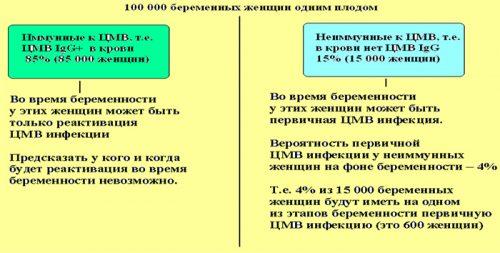 Статистика инфекции