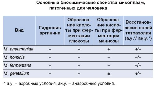 Биохимические свойства микоплазм