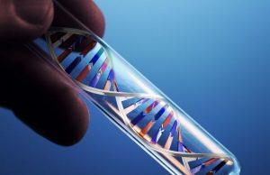 ДНК анализ на хламидии