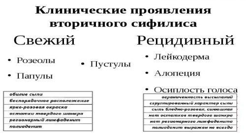 Клинические проявления вторичного сифилиса