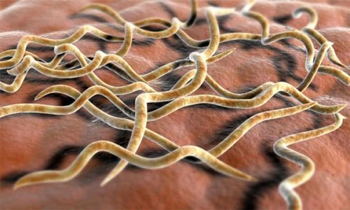 Протекание болезни в скрытой форме