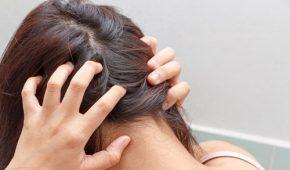 Симптомы чесотки на голове