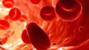 Попадание антибиотиков в кровь