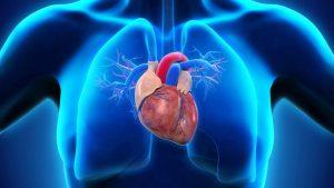 Дисфункция сердечно-сосудистой системы
