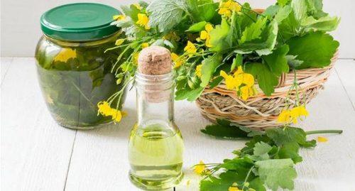 Польза трав при лечении эндометриоза