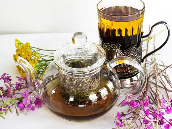 Иван чай в урологии
