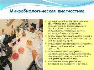 Микробиологическая диагностика