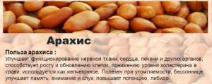 Польза арахиса