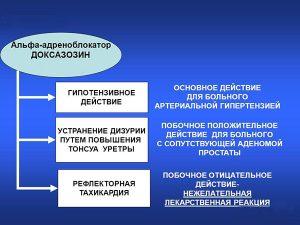 Схема действия Доксазозина