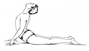 Бхуджангасана (поза кобры)