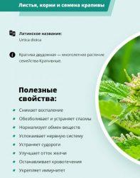 Лечебные свойства крапивы
