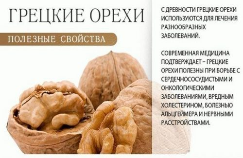 Влияние грецких орехов на работу организма