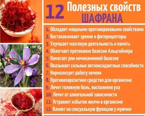 Полезные свойства шафрана