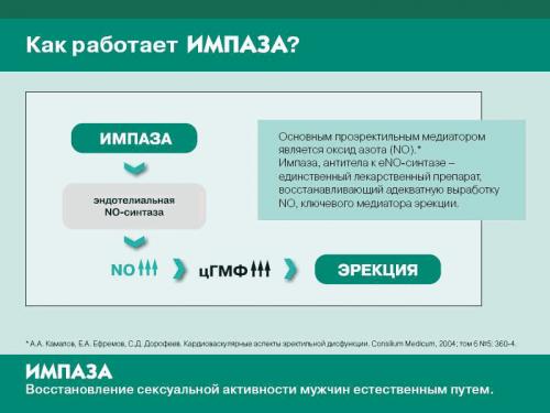 Схема действия препарата Импаза